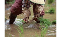 World Food Day – CSIRO rising to the challenges