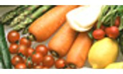 Analytical and measuring instruments of food and beverage industry