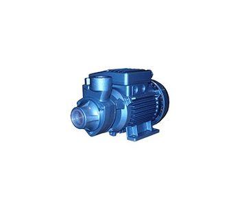 Model CAP SERIES - Single Impeller Centrifugal Electric Pumps