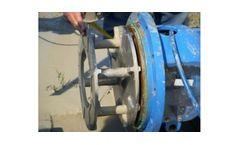 Discflo Pumps