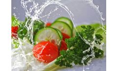 Wastewater management for the vegetable processing industry