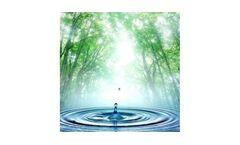 Non-Revenue Water Services