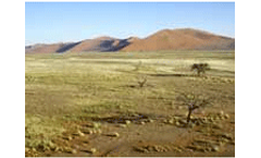 Turning the land degradation tide on world desertification day