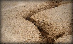 Soil Erosion and Sedimentation