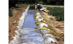 Irrigation key for Africa's food security – Diouf