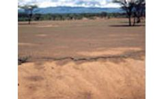 Land degradation on the rise, according to FAO
