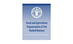 FAO warns of the risk of a double tragedy in the Philippines