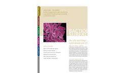 BactiQuant Surface Flyer