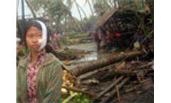 ADB provides US$1m for Samoa Tsunami victims