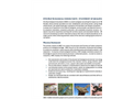 Otis Bay Ecological Consultants - Statement of Qualifications Brochure