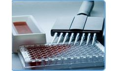 Downstream Processing and Antibody Conjugations Services