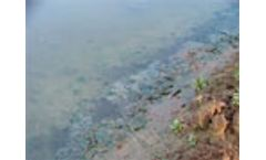 "Israel`s River Jordan a ""sewage pipe"", says UN agency"