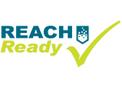 REACHReady Bespoke Training