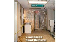 Lead-based Paint Services