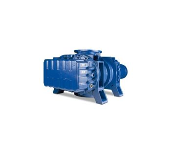 Canned Motor Positive Displacement Blowers-2