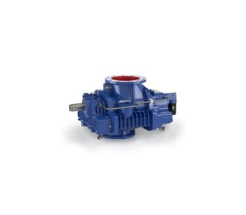 Delta Hybrid - Model D 98 V - Rotary Lobe Compressor Stages With Pre-Inlet Channel
