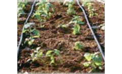 """""""Efficient"""" irrigation tool may deplete more water"""