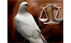 EU reaches agreement on Directive on the protection of the environment through criminal law