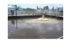 Wastewater treatment solutions for controlling filamentous microorganisms