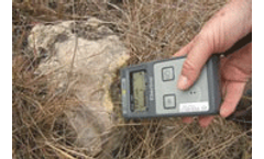 Nitrogen soil tests - Do they always reflect what is going on?