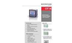 BD|Sensors - Model CIT 600 - Multichannel Process Display with Contacts - Datasheet