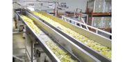 Industrial Horizontal Motion Conveyor