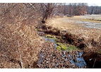 Stormwater Management For Engineering