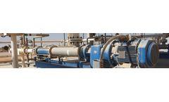 PCM Moineau - Model API 676 - Progressing Cavity Pump