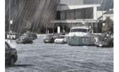 Raineo - Rainwater Management System