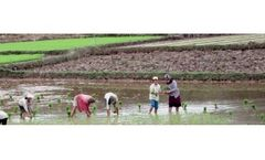 Sustainable Water and Land Resources Development Services