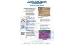 Membrane Autopsy Services - Brochure