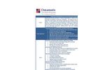 Datamatix Certified Business Reengineering Program Brochure