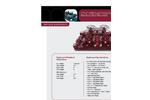 2-9/16 15M Dual Choke Gate Valve Manifold Skid Mounted Brochure