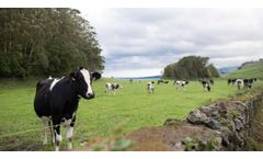 USDA Invests $20.2 Million in Grants for Dairy Business Innovation Initiatives