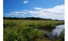 Rutgers Vegetation Identification for Wetland Delineation: South