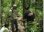 Rutgers Methodology for Delineating Wetlands
