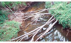 Stream Flow Monitoring