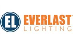 First-ever technology from FSS: PVW hybrid street light