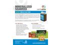 Mineralized Liquid Seaweed