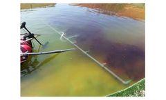 Zero valent iron nanoparticles for algae bloom removal