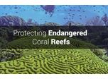 Protecting Endangered Coral Reefs