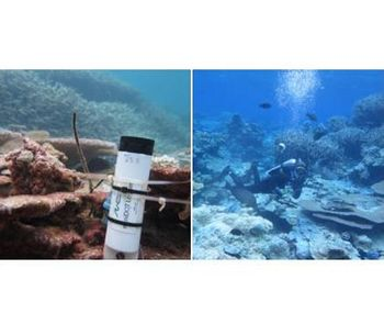 Measuring Dissolved Oxygen Levels in Seawater - Case Study