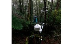 Rainforest rehabilitation in every sense