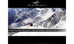 Pegasus TSI Brochure