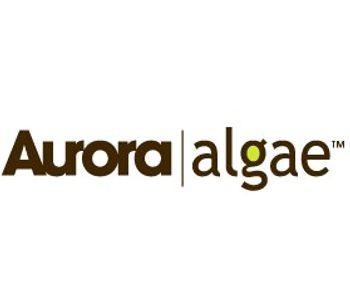 Algae - Biofuel