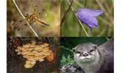 Biodiversity: Facts and figures