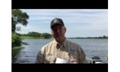 The Dispatch - Water Safety Video