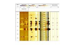 WellCAD - Borehole Analysis Software