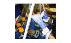 Bioremediation Studies Service