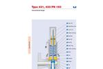 Model 431 / 433 PN 160 - Flanged Safety Valves Brochure